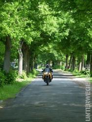 alleenstrasse-2012-motorrad-deutschland-tour-04-129669