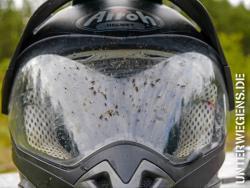 Anti-Mücken-Mittel: Warum und wie es wirkt