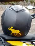 Enduro Motorrad Helm Airoh S4