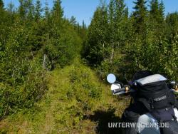 Nordkap mit dem Motorrad 2011 - Tag 3